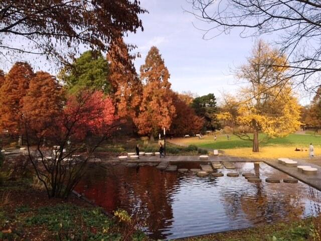 Planten un Blomen in autunno Hamburg Amburgo autunno herbst