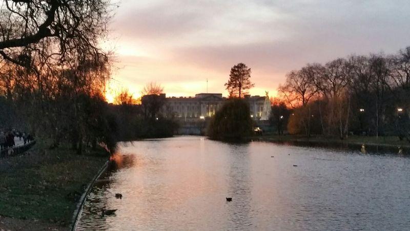 natale a londra london christmas buckingham palace