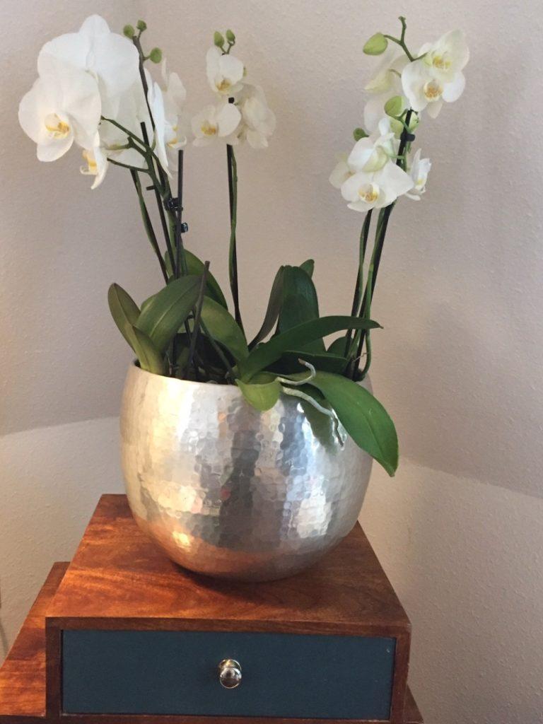 vasi orchidee metallo argento